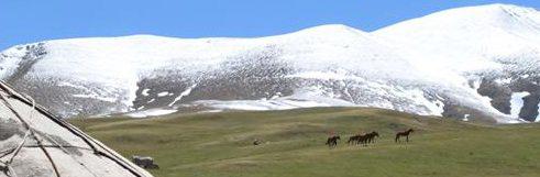 Kirgizie-KR15