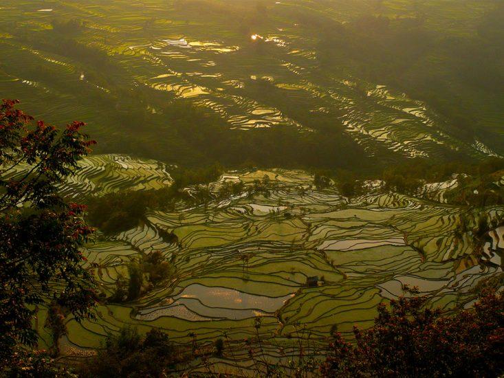 Yuanyang-rijstterrassen-small